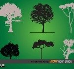 tree,silhouette,nature,green,element,design element,bush,pack
