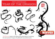 chinese new year,dragon,year of the dragon