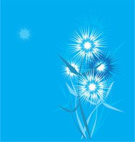 blue,botany,card,dandelion,fluff,nature,plant,summer