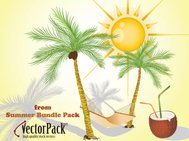 coconut,palm,summer,sun,rest,recreation,leisure,shadow,drink,coconut tree,beach,straw,shade,holiday,nature,palm tree,tree,animals,backgrounds & banners,buildings,celebrations & holidays,christmas,decorative & floral,design elements,fantasy,food,grunge & splatters,heraldry,free vector,icons,map,misc