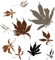 autumn,branch,brown,cold,dead,drop,earth,fall,leaf,nature,park,plant,red,season,tree,twig,wind,winter