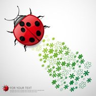 animal,art,beetle,bird,bug,character,color,colorful,cute,drawing,floral,flower,green,illustration,insect,lady,ladybird,ladybug,life,little,natural,nature,red,small,spotted,wild,wildlife