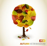 autumn,leaf,retro,tree