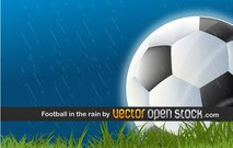 arena,ball,black and white,court,football,grass,rain,scene,sport