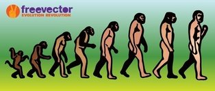 evolution,of,man,darwin\'s,theory,darwin,charles,monkey,people,person,ape,silhouette,illustration,graphics,ancestor,drawing,evolve,feet,forward,grow,growth,history,leg,mankind,men
