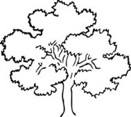 tree,plant,oak,media,clip art,externalsource,public domain,image,png,svg
