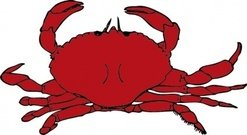 crab,animal,crustacean,media,clip art,externalsource,public domain,image,png,svg