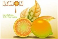 fruit,lemon leaft,rice,lemon vector,fruit lemon leaft,lemon