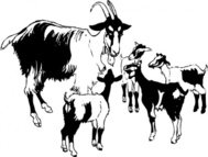 goat,kid,animal,mammal,media,clip art,externalsource,public domain,image,png,svg
