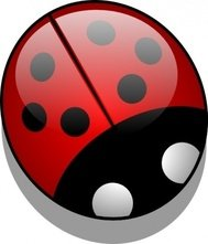 ladybug,colour,animal,insect,bug,beetle,media,clip art,how i did it,public domain,image,png,svg