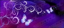 purple,butterfly,dream,background,pattern