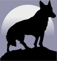 wolf,remix,animal,mammal,nature,silhouette,wild,moon,night