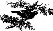 bird,branch,project gutenberg,media,clip art,externalsource,public domain,image,svg