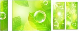 vector,fresh,green,background,material