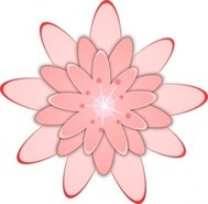 pink,flower,blossom,plant,cute,media,clip art,public domain,image,svg