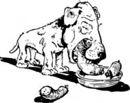 eating,sausage,cartoon,animal,dog,media,clip art,externalsource,public domain,image,png,svg