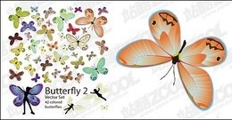 butterfly,vector,material
