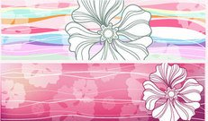 nature,flower,banner,horizontal,set,collection,flowered,pink