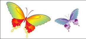 vector,material,butterfly