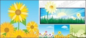 sunflower,sunrise,windmill,beautiful,flower,theme,illustration