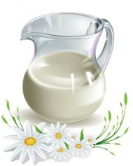 milk,camomile,pitcher,chamomile,flower,flower
