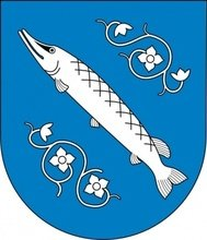 fish,flower,coat,arm