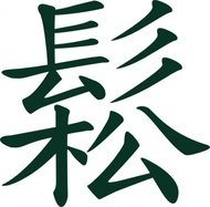 sungchinese,taichi,meaning,flowing,relaxed,clip