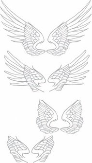 free,hand,drawn,vector,wing
