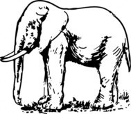 elephant,drawing,clip