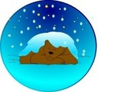 sleeping,bear,under,star,snow,circle
