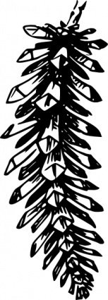 open,pine,cone,nature,plant,conifer,spruce,biology,botany,line art,black and white,contour,outline,media,clip art,externalsource,public domain,image,png,svg,wikimedia common,psf,wikimedia common