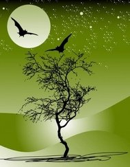 nature,tree,moon,night,scene,star