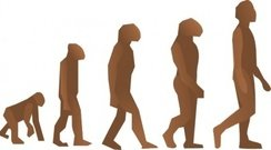 evolution,step