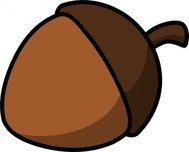 cartoon,colour,acorn,nut