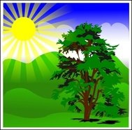 sunny,spring,blue,remix,tree,nature,sun,sunshine,green,vegetal,landscape,scenery,hill