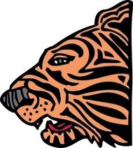 tiger,head,animal,feline,media,clip art,externalsource,public domain,image,png,svg