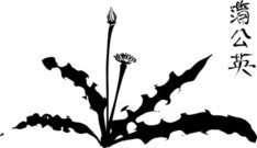 calligraphic,dandelion,line art,plant,flower,silhouette,calligraphy