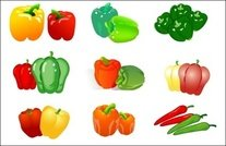 table,vegetable,vector,pepper