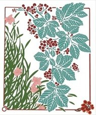 floral,illustration,plant,ornament