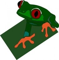 eyed,frog,animal,amphibian,rana,media,clip art,public domain,image,png,svg