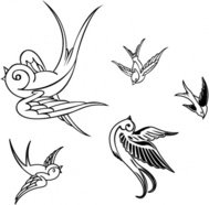 bird,sparrow,illustration,bird