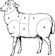 sheep,animal,mutton,food,meat,media,clip art,externalsource,public domain,image,png,svg