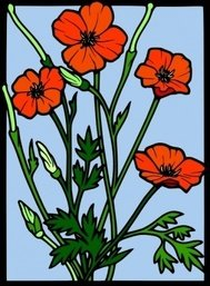 flower,drawing,glass,remix,color,outline,poppy flower,nature,wild,poppy,line art,season,summer,clip art,media,public domain,image,png,svg