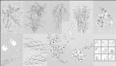 vector,line,drawing,flower,dandelion,lily