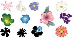 nature,_nature,flowers.floral,color,colorful,daisy,pink,blue,white,orange.elements