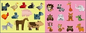 variety,cartoon,animal,vector,material