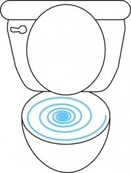swirly,toilet