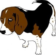 copper,beagle,animal,dog,puppy,mammal,pet