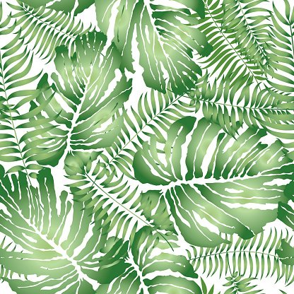 Floral Leaf Pattern Tropical Palm Leaves Seamless Background