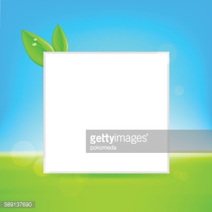 White frame with leaf.